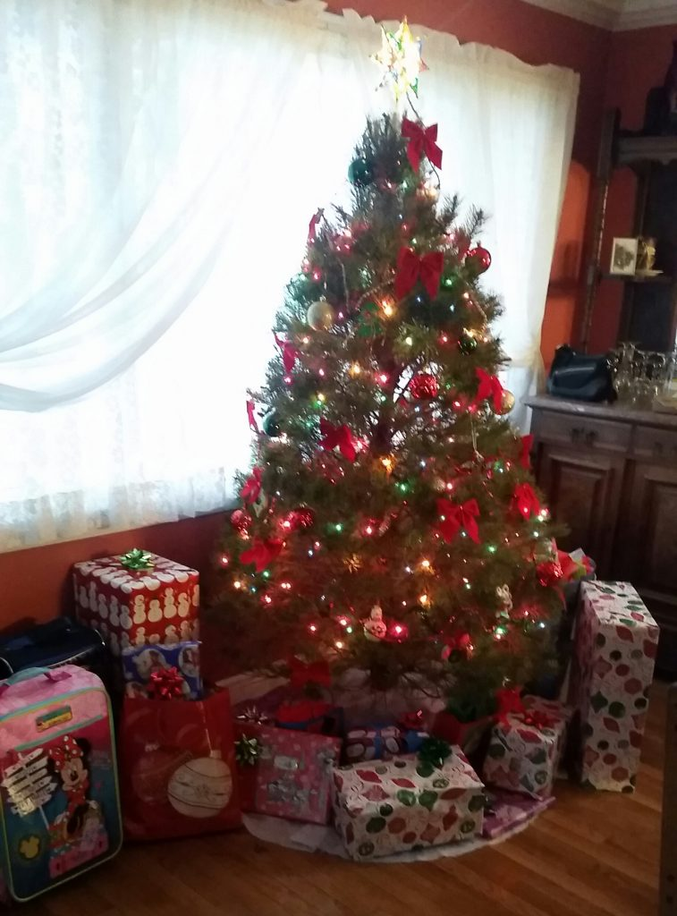 Christmas Tree Packing and Storage